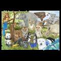 131020121039Melissa_and_Doug_48_Pieces_Endangered_Species_Floor_Puzzle