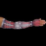 LympheDudes Cyborg Compression Arm Sleeve And Gauntlet,Each,CYBORG