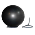 2692014756Ideal_Wall_Mount_Therapy_Ball_Storage_Rack