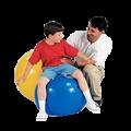 29920142446Gymnic-Plus-Exercise-Ball