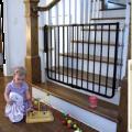 71120121343Cardinal_Gates_Wrought_Iron_Decor_Gate