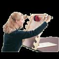 2262011251Sammons_Shoulder_Exercise_Ladder