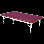 Armedica Adjustable Hi Lo AM Series Steel Mat Treatment Table,Each,AM-642