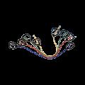 261020154326Economy_Adjustable_Handles